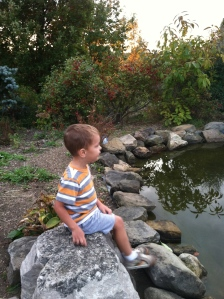 Deep in thought by the coy pond.