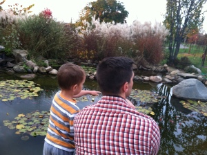 The boys looking at a coy pond.