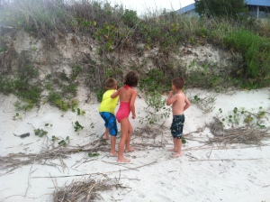 Theo made friends his first trip down to the beach...chasing a crab!