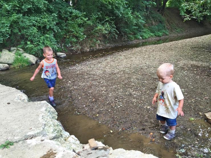 Summer Walks, Picnics, and Creek Exploration