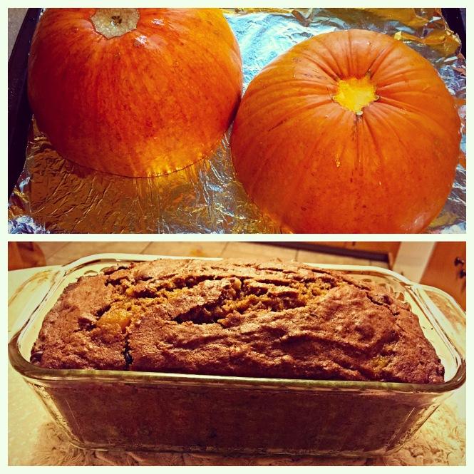 http://sallysbakingaddiction.com/2014/09/08/pumpkin-chocolate-chip-bread/