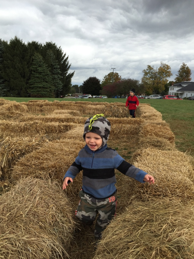 Brothers being brothers. Having fun in the hay bale maze!