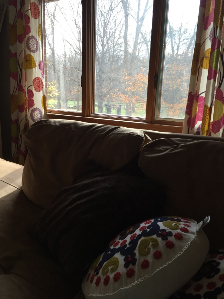 The view from this window, in this room, on this couch.